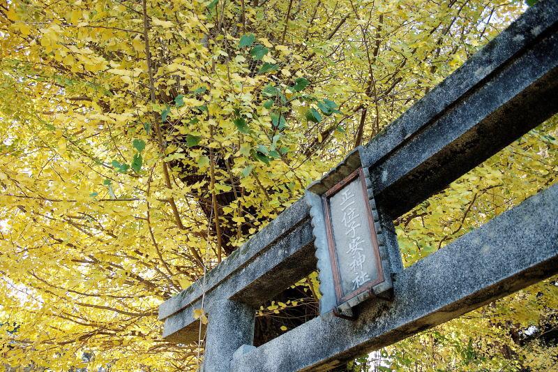 子安神社の黄葉